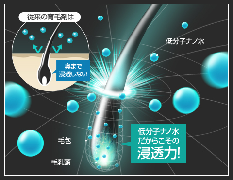 イクオスの浸透力のイメージ図。従来の育毛剤は成分の分子レベルが大きくて、毛穴の奥深くまで浸透することは困難でした。イクオスでは低分子ナノ水を採用しているので、毛穴の奥深くにある毛包や毛乳頭までしっかりと浸透していきます。