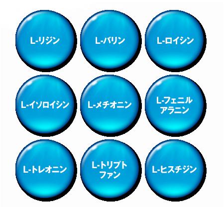 イクオスサプリEXでは9種類の必須アミノ酸(L-リジン、L-バリン、L-ロイシン、L-イソロイシン、L-メチオニン、L-フェニルアラニン、L-トレオニン、L-トリプトファン、L-ヒスチジン