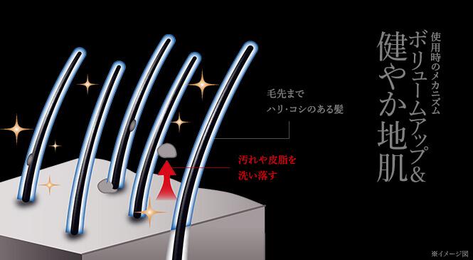 3D ボリュームアップシャンプーEX