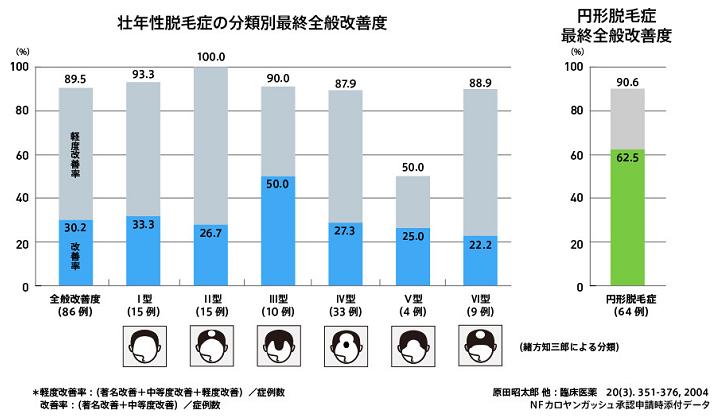 カロヤンプログレEXの壮年性脱毛症の分類別最終全般改善度のグラフ。全般改善度(改善率30.2%、軽度改善率59.3%)。ハミルトン・ノーウッド分類別症例における改善度(Ⅰ型の改善度33.3%、Ⅱ型の改善度26.7%、Ⅲ型の改善度50.0%、Ⅳ型の改善度27.3%、Ⅴ型の改善度25.0%、Ⅵ型の改善度22.2%) 円形脱毛症の最終全般改善度は62.5% ~NFカロヤンガッシュ承認申請時添付データ~